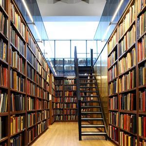 Библиотеки Рудни