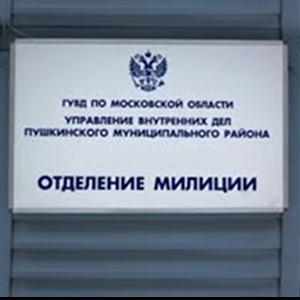 Отделения полиции Рудни